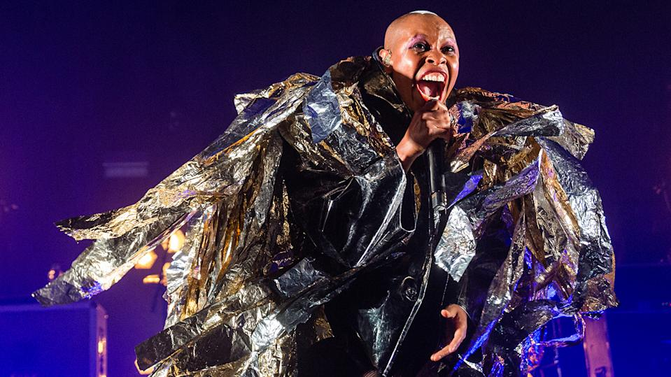 Skin revealed that a stinky animal, and not drugs, were the inspiration behind Skunk Anansie's name (Image: Getty)