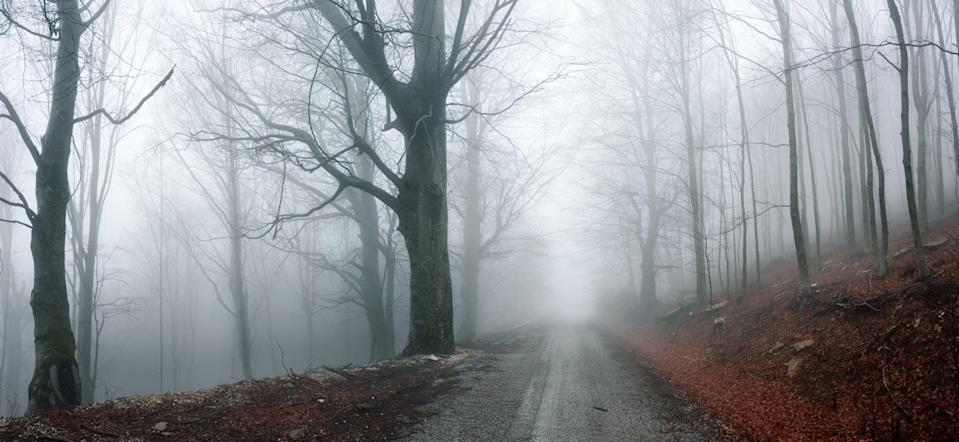 "<p><a href=""https://www.travelandleisure.com/holiday-travel/halloween/haunted-roads"" class=""link rapid-noclick-resp"" rel=""nofollow noopener"" target=""_blank"" data-ylk=""slk:Jeremy Swamp Road in Connecticut"">Jeremy Swamp Road in Connecticut</a> is known for unexplained disappearances, and the legend is even stranger than you'd expect. People in broken-down cars have been known to mysteriously vanish as they wait for their tow truck. Even creepier? Stories attribute the disappearances to ""Melon Heads,"" or humanoid creatures with bulbous heads that come out of the woods and attack.</p>"
