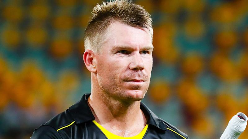 David Warner, pictured, was reportedly back to his sledging ways during the Ashes.