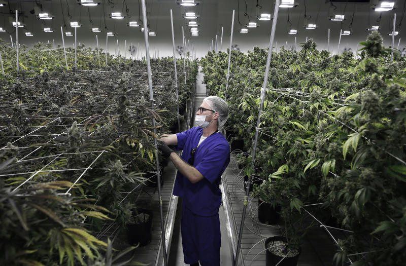 Pot group predicts $1B in Nevada tax revenue over 7 years