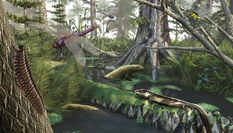 "<span class=""caption"">The Devonian Period saw the first tetrapods emerge.</span> <span class=""attribution""><a class=""link rapid-noclick-resp"" href=""https://www.shutterstock.com/image-illustration/devonian-landscape-3d-render-759826384"" rel=""nofollow noopener"" target=""_blank"" data-ylk=""slk:Nicolas Primola/Shutterstock"">Nicolas Primola/Shutterstock</a></span>"