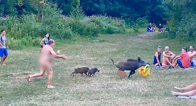 A German nudist chased a boar after it stole his bag of possessions. Source: Facebook/Adele Landauer