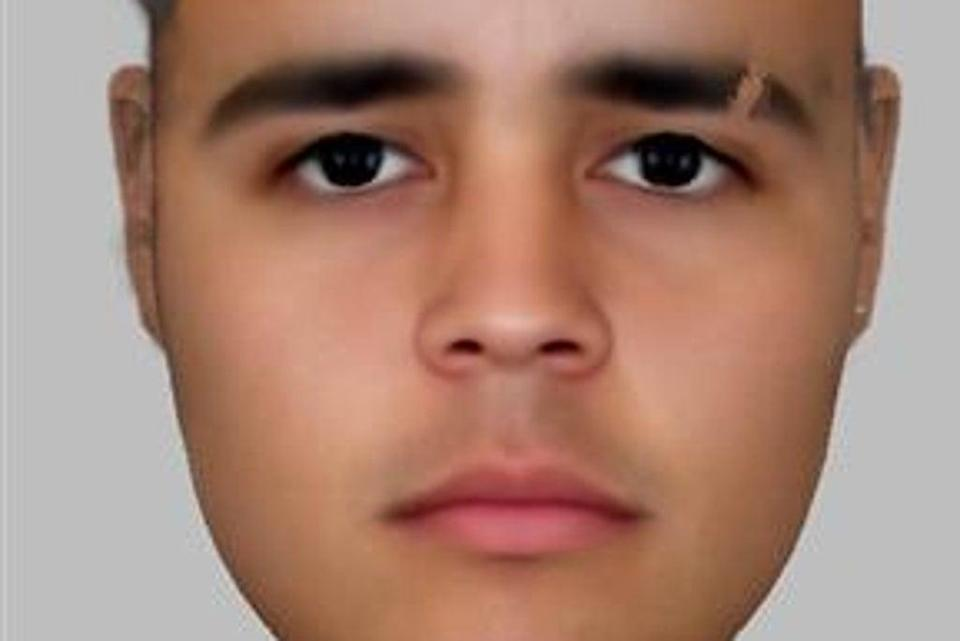 The e-fit of the beach attacker (HANDOUT)
