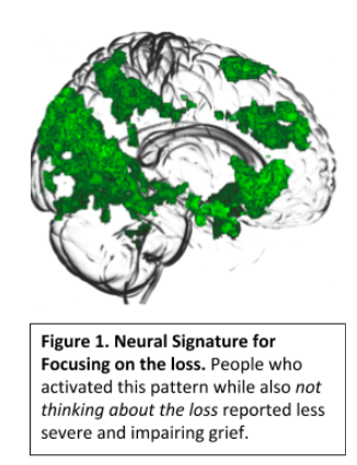 Image of a brain scan. Text below reads: Figure 1. Neural Signature for Focusing on the loss. People who activated this pattern while also not thinking about the loss reported less severe and impairing grief.