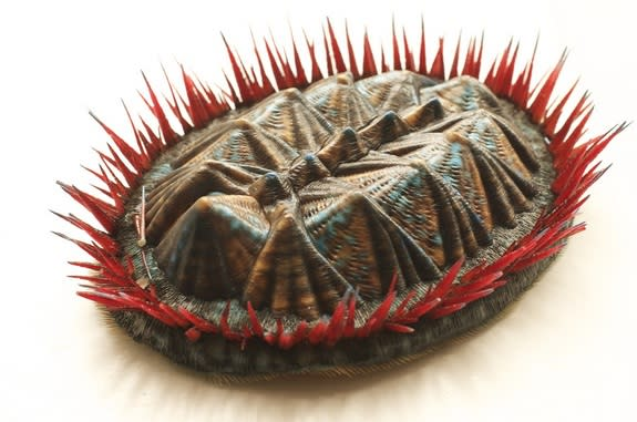 Long-Gone Mollusk Comes to Life with 3D Printer