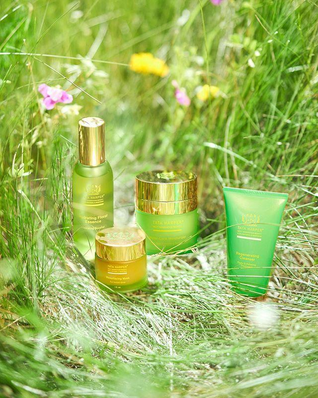 """<p>If you're looking for some natural, luxury skincare (and why wouldn't you be?) chances are you've come across this insanely pretty-looking line. Everything Tata makes is non-toxic and 100 percent natural.</p><p><a class=""""link rapid-noclick-resp"""" href=""""https://go.redirectingat.com?id=74968X1596630&url=https%3A%2F%2Fwww.tataharperskincare.com%2Fshop&sref=https%3A%2F%2Fwww.cosmopolitan.com%2Fstyle-beauty%2Ffashion%2Fg33313363%2Flatina-owned-businesses-to-shop%2F"""" rel=""""nofollow noopener"""" target=""""_blank"""" data-ylk=""""slk:SHOP NOW"""">SHOP NOW</a></p><p><a href=""""https://www.instagram.com/p/CB3dO8GBPeW/"""" rel=""""nofollow noopener"""" target=""""_blank"""" data-ylk=""""slk:See the original post on Instagram"""" class=""""link rapid-noclick-resp"""">See the original post on Instagram</a></p>"""