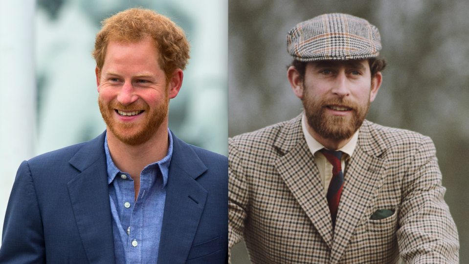 14+ Prince Harry Younger