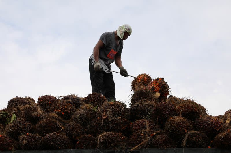 A worker arranges palm oil fruit bunches on a truck at a factory in Tanjung Karang
