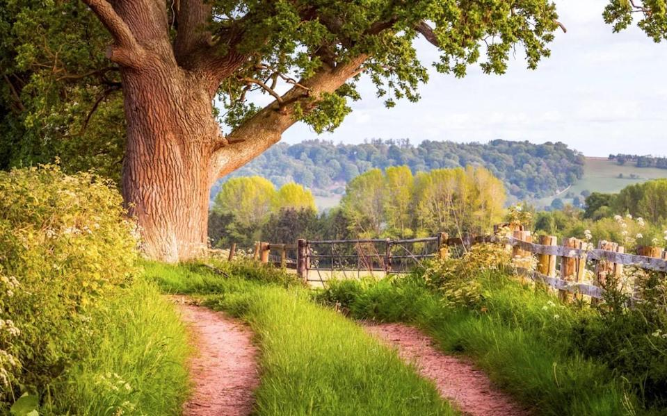Herefordshire is a great place to start - getty