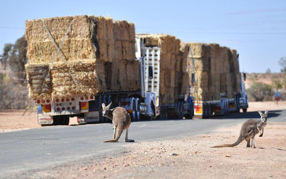 The man said he wants to donate a portion of the winnings to drought-stricken farmers. Photo: AAP