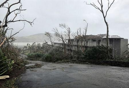 Damaged trees and buildings can be seen after Cyclone Debbie hit the resort on Hamilton Island, located off the east coast of Queensland in Australia