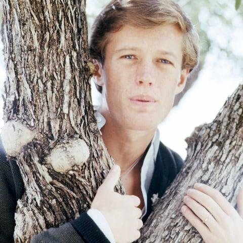 Peter Fonda, circa 1962 - Credit: Silver Screen Collection/Getty