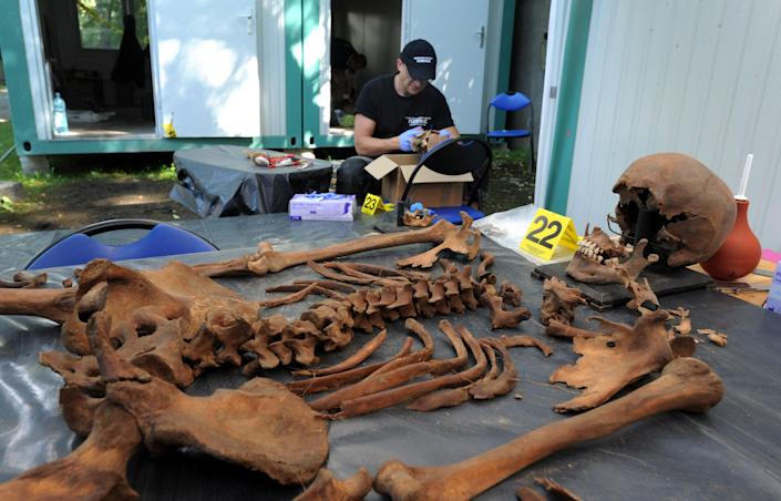 In this photo taken Tuesday, Aug. 7, 2012, forensic worker cleans a skelleton during works at the Powazki cemetery in Warsaw, Poland. More than a hundred skeletons of Poles murdered by the communist regime after World War II have been excavated from a secret mass grave on the edge of Warsaw's Powazki Military Cemetery during recent digging works. Historians hope to identify among them the remains of Witold Pilecki who volunteered to be an Auschwitz inmate to secretly gather evidence of atrocities there. (AP Photo/Alik Keplicz)