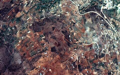 Coffee plantations seen from the air in Brazil - Credit: UK Space Agency