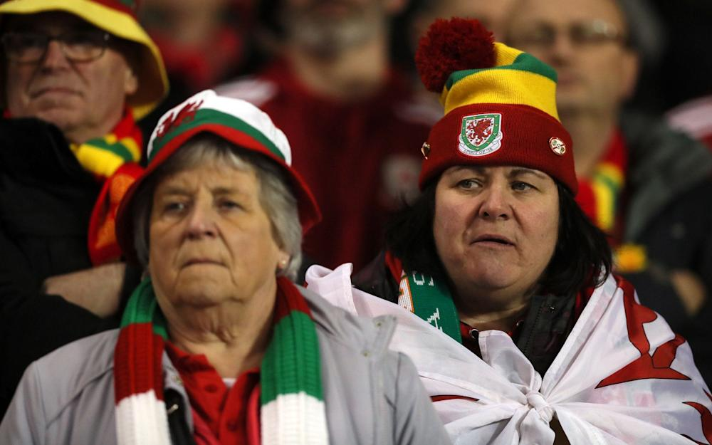 Wales fans - Credit: Brian Lawless/PA