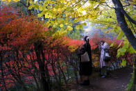People wearing face masks to help curb the spread of the coronavirus take pictures while walking along a path as the trees begin to change fall foliage colors Monday, Oct. 26, 2020, in Nagano, northwest of Tokyo, Japan. (AP Photo/Kiichiro Sato)