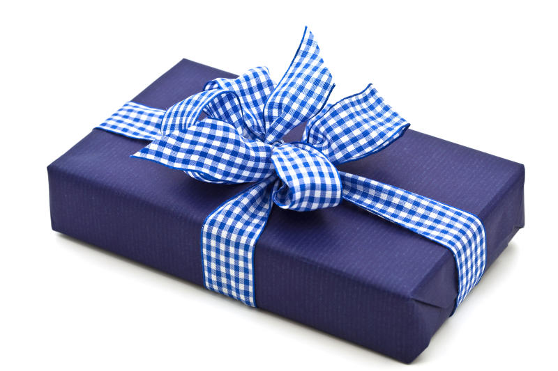 close-up of blue gift box with checked blue and white ribbon