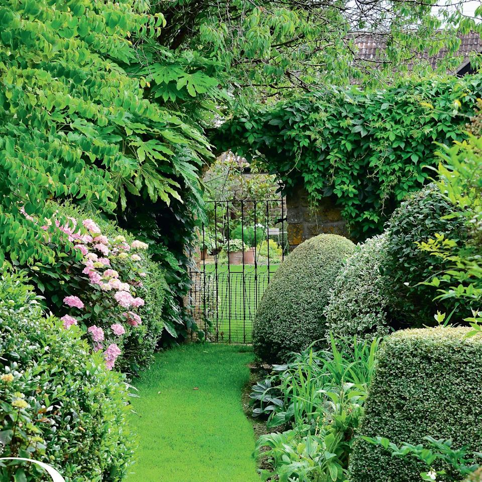 Photo credit: Glorious Gardens, by Country Living|living4media, Cox, Stuart