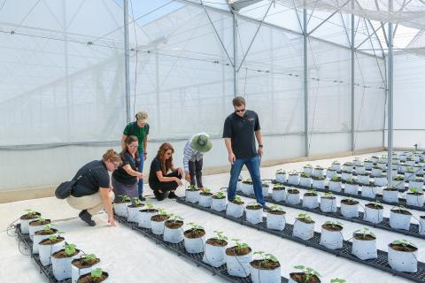 3M Launches a New Sustainability Goal With Global Skills-Based Volunteer Program