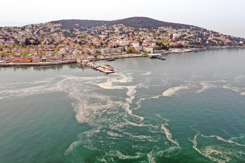 ISTANBUL, TURKEY - MAY 02: A drone photo shows an aerial view of white layer formed on the sea, caused by the sea snots near Maltepe, Kadikoy and Adalar districts of Istanbul, Turkey on May 02, 2021. (Photo by Lokman Akkaya/Anadolu Agency via Getty Images)