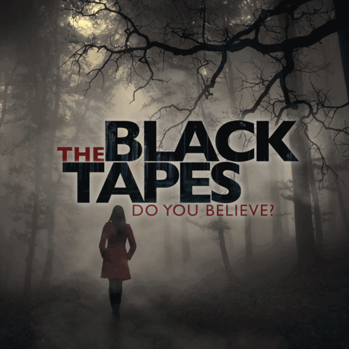 "<p>Like many boundary-pushing audio dramas, <a href=""http://theblacktapespodcast.com/"" rel=""nofollow noopener"" target=""_blank"" data-ylk=""slk:The Black Tapes"" class=""link rapid-noclick-resp""><em>The Black Tapes</em></a> has its flaws: The acting could generously be described as ""uneven,"" and its devoted fans weren't entirely satisfied by the ending. But the 24-episode story is still well worth a listen for horror fans, as the faux docudrama's investigations of ghosts, demons, and possibly apocalypse-invoking musical compositions are sufficiently hair-raising stuff.</p><p><a class=""link rapid-noclick-resp"" href=""https://podcasts.apple.com/us/podcast/the-black-tapes/id997522893"" rel=""nofollow noopener"" target=""_blank"" data-ylk=""slk:Listen Now"">Listen Now</a></p>"