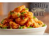 """<p>Bonefish Grill got its start in Florida in 2000 and the <a href=""""https://www.eatthis.com/bonefish-grill-most-popular-item/"""" rel=""""nofollow noopener"""" target=""""_blank"""" data-ylk=""""slk:Bang Bang Shrimp"""" class=""""link rapid-noclick-resp"""">Bang Bang Shrimp</a> appetizer quickly became a well-known favorite. It's fried shrimp in a sauce that's both creamy and spicy, so yeah, we can imagine why patrons would order Bang Bang Shrimp over other menu items. Bloggers are frequently trying to copy the recipe, and Bonefish is in on the buzz. It's spun the appetizer off into an entree by making tacos with Bang Bang Shrimp, and there's a whole night devoted to the dish: On """"Bang Wednesday,"""" you can get a deal on the hors d'oeuvre. </p>"""