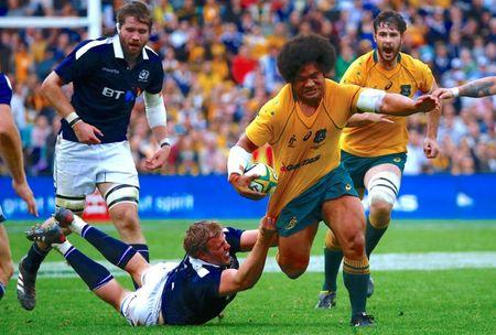 FILE PHOTO - Rugby Union - Australia vs Scotland - Sydney Football Stadium, Sydney, Australia - June 17, 2017 - Australia's Tatafu Polota-Nau is tackled by Scotland's Jonny Gray.    REUTERS/David Gray/File photo
