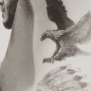 """<p>David also has an eagle under his left armpit. He posted his new inking to Instagram with the simple caption: """"RISE ABOVE"""". [Photo: Instagram] </p>"""