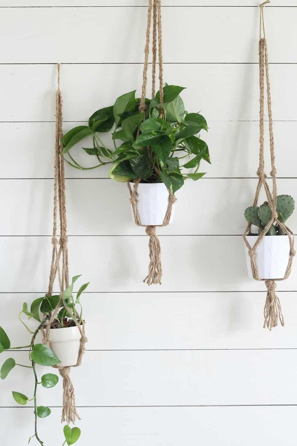 """<p><strong>CRAZY PLANT BAE</strong></p><p>crazyplantbae.com</p><p><strong>$27.99</strong></p><p><a href=""""https://www.crazyplantbae.com/collections/products/products/3-macrame-planter"""" rel=""""nofollow noopener"""" target=""""_blank"""" data-ylk=""""slk:Shop Now"""" class=""""link rapid-noclick-resp"""">Shop Now</a></p><p>The hanging planter is an actual classic. This set of three is suuuper minimal and will look great in any boho-themed aesthetic.</p>"""