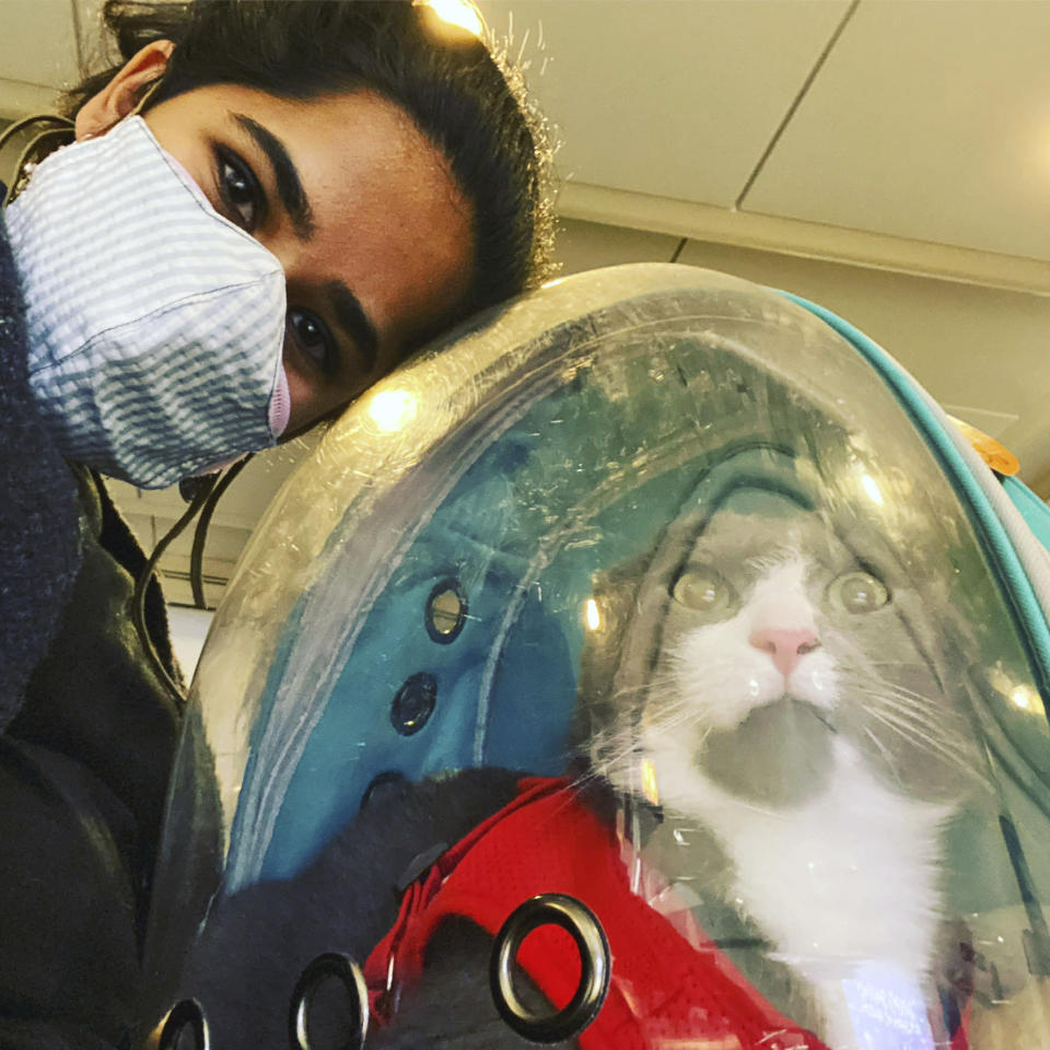 In this photo provided by Devika Ranjan, Devikia Ranjan takes a selfie with her cat Aloo at O'Hare International Airport on Nov. 21, 2020, in Chicago. Ranjan, a theater director in Chicago, wanted pandemic company and got a rescue cat she named Aloo during the summer. The formerly feral cat is believed to be around 3, and seems to be very comfortable with a slow-paced, high-attention pandemic life. (Devika Ranjan via AP)