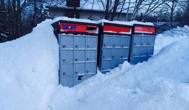 Carroll says it can sometimes take days for snow to be cleared from community mailboxes, meaning people living with a physical disability, like her, might not be able to send their ballots by the deadline if there's a storm.