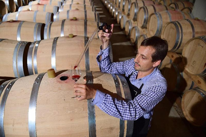 An oenologist extracts a sample of wine out of a barrel at a cellar of the cooperative Vinovalie, in Gaillac, southern France, on July 22, 2014 (AFP Photo/Eric Cabanis)