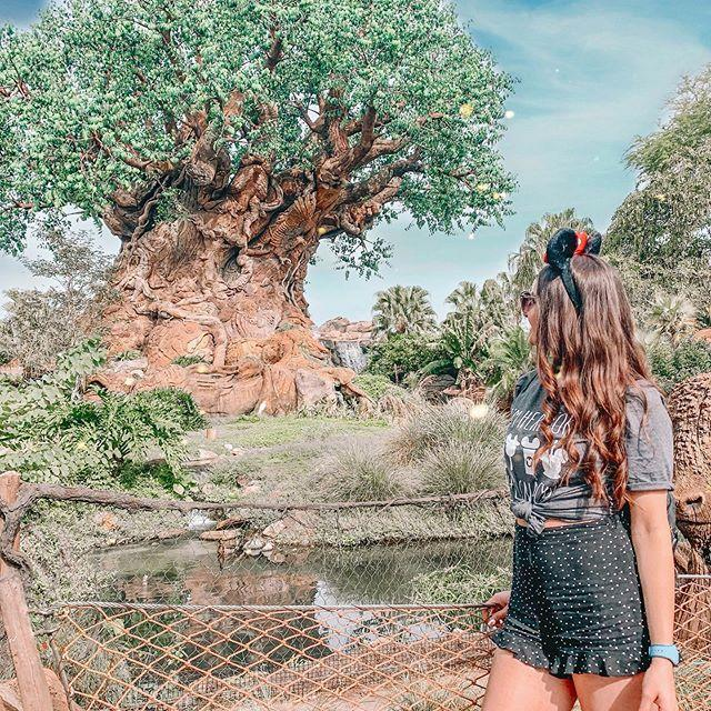 """<p>Frankie's posts skew a bit nostalgic as she is U.K.-based and doesn't get to visit the parks too frequently, but her hair is flawless and her enthusiasm is contagious, so. </p><p><a href=""""https://www.instagram.com/p/CAsCjPMDw9w/"""" rel=""""nofollow noopener"""" target=""""_blank"""" data-ylk=""""slk:See the original post on Instagram"""" class=""""link rapid-noclick-resp"""">See the original post on Instagram</a></p>"""