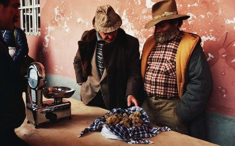 The truffle festival has become one of the biggest cultural events in Northern Italy, and a autumn tradition - Credit: Christopher Pillitz/Getty Images