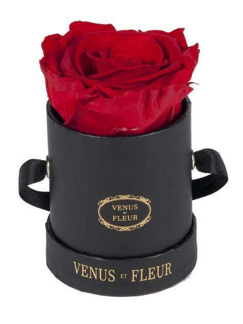 "<p><strong>Venus et Fleur</strong></p><p>venusetfleur.com</p><p><strong>$39.00</strong></p><p><a href=""https://www.venusetfleur.com/products/le-mini-round?variant=30379344589&gclid=Cj0KCQiAurjgBRCqARIsAD09sg_jByKdBHDnlbdcw_EEmkiRHAiNZ5dQDkVRYLI0W7lA-RGvycVSa9IaAvr2EALw_wcB"" rel=""nofollow noopener"" target=""_blank"" data-ylk=""slk:SHOP NOW"" class=""link rapid-noclick-resp"">SHOP NOW</a></p><p>Though this beautiful <a href=""https://www.womansday.com/home/a20107708/costco-mothers-day-rose-sale/"" rel=""nofollow noopener"" target=""_blank"" data-ylk=""slk:mini rose"" class=""link rapid-noclick-resp"">mini rose</a> may seem pricey for it's size, that's because it has a lifespan of one year.</p>"