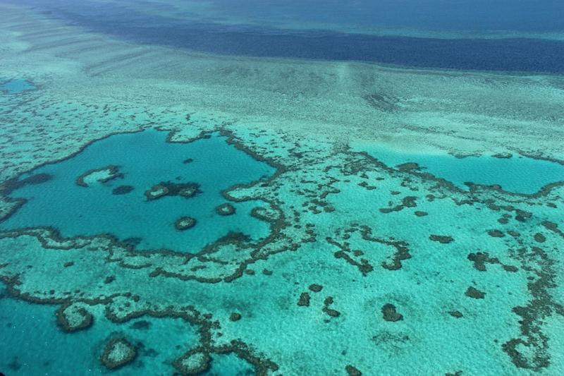 An aerial view of the Great Barrier Reef off the coast of the Whitsunday Islands, along the central coast of Queensland (AFP Photo/Sarah Lai)