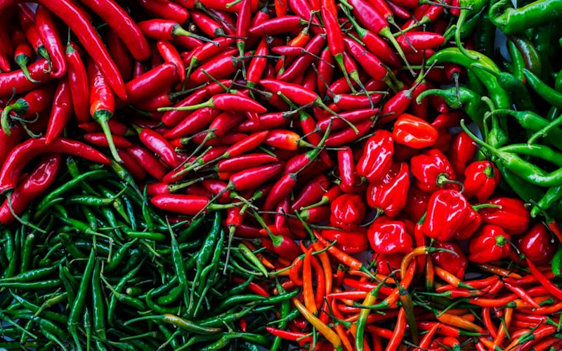 What is the hottest chilli in the world? - Getty Images Contributor