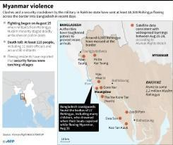 Farmers turned fighters: Rohingya militia 'bigger by the day'