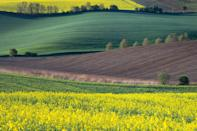 <p>The rolling hills of the Czech Republic look like fabric.</p>