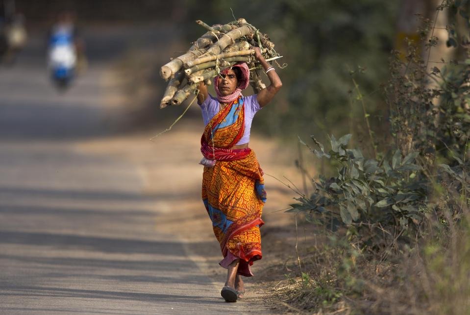 An Indian woman carries firewood and returns home after a day's work in a paddy field on the outskirts of Gauhati, India, Friday, Feb. 1, 2019. Indian Prime Minister Narendra Modi's government on Friday announced cash handouts for small farmers, a pension scheme for informal workers and a doubling of tax relief for the lower middle class in an interim budget designed to shore up its popularity ahead of national elections due before May. Finance Minister Piyush Goyal  said farmers would be paid 6,000 rupees ($85) annually, benefiting as many as 120 million households. (AP Photo/Anupam Nath)