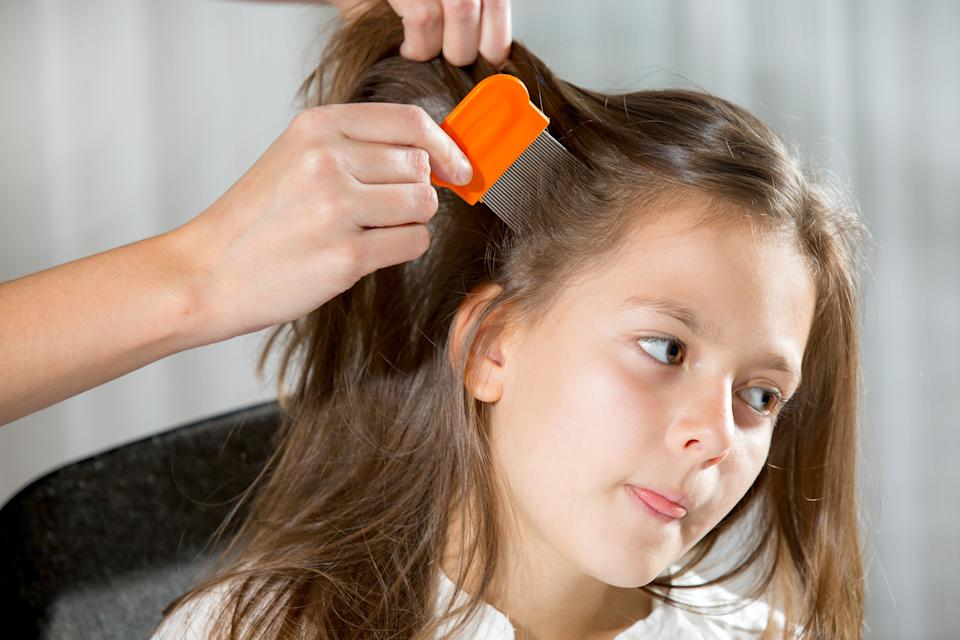 A mother using a comb to look for head lice