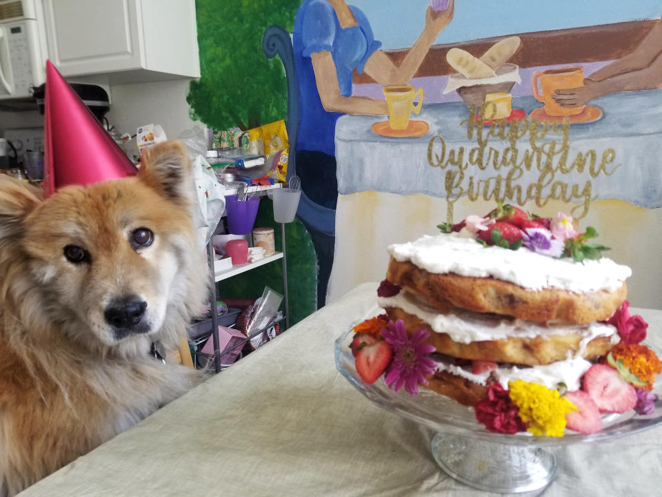 A dog named Penny sits next to a naked strawberry chamomile cake AP reporter Terry Tang made to celebrate her birthday in isolation during the COVID-19 pandemic in Phoenix, June 2020. (AP Photo/Terry Tang)