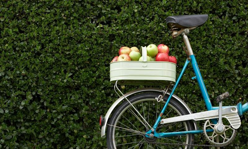 Bike with apples