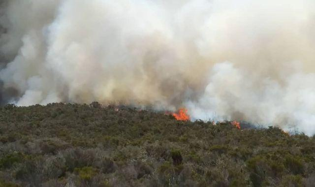 Mount Kilimanjaro: 'Fire lit to warm food for tourists' may have sparked mountain blaze