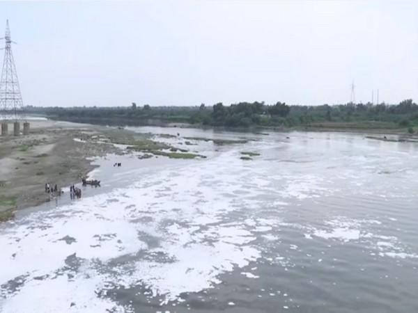 A thick foam of froth has polluted the River Yamuna. (Photos/ANI)