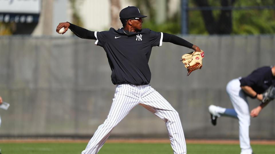 Alexander Vizcaino works out at Yankees spring training