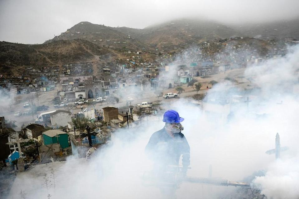 A specialist fumigates the Nueva Esperanza graveyard in the outskirts of Lima on January 15, 2016 (AFP Photo/Ernesto Benavides)