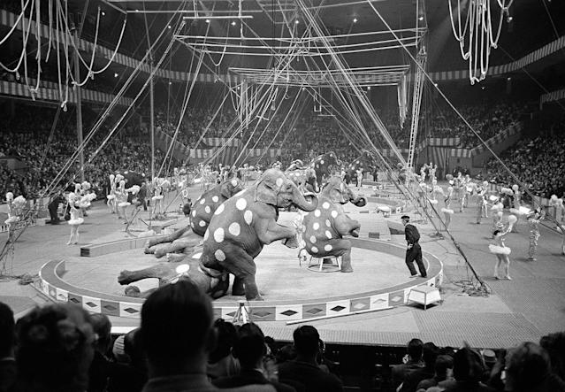 <p>Elephants and dancers go through their paces in opening stages of first night of the Ringling Brothers and Barnum and Bailey Circus at Madison Square Garden in New York on March 29, 1961. About 7,500 persons turned out for initial performance. (AP Photo/Marty Lederhandler) </p>
