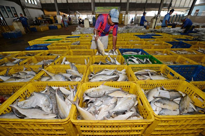 Indonesia Still Exporting Fish to China Even After Virus Discovered
