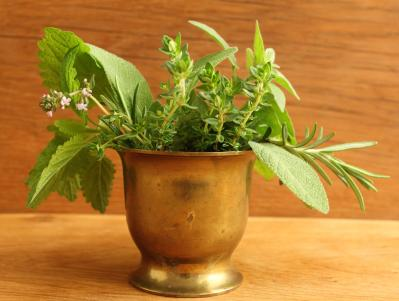 "<div class=""caption-credit""> Photo by: fotokris</div><div class=""caption-title""></div><b>Lemon Balm</b> <br> There are many available herbs that can help alleviate symptoms of anxiety. Some are widely used while others need clearance from the Bureau of Food and Drugs (BFAD). But one of the herbs that has been popularly used is the lemon balm. It has been recorded as being widely used by Arab healers in the eleventh century. It was also used by ancient Greek and Roman, and even up to the Middle Ages. Lemon balm is known to improve mood, boost alertness, invite calmness, and enhance sleep. It is most commonly taken in the form of tea. <br> <p>   <b>· <a rel=""nofollow"" href=""http://betterhealthblog.com/tips-to-purify-your-drinking-water/"">Tips to Purify Your Drinking Water</a></b> </p> <br>"